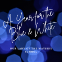 A Year for the Blue and White